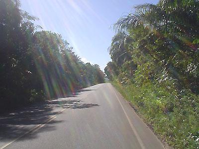 1_estradaparqueg